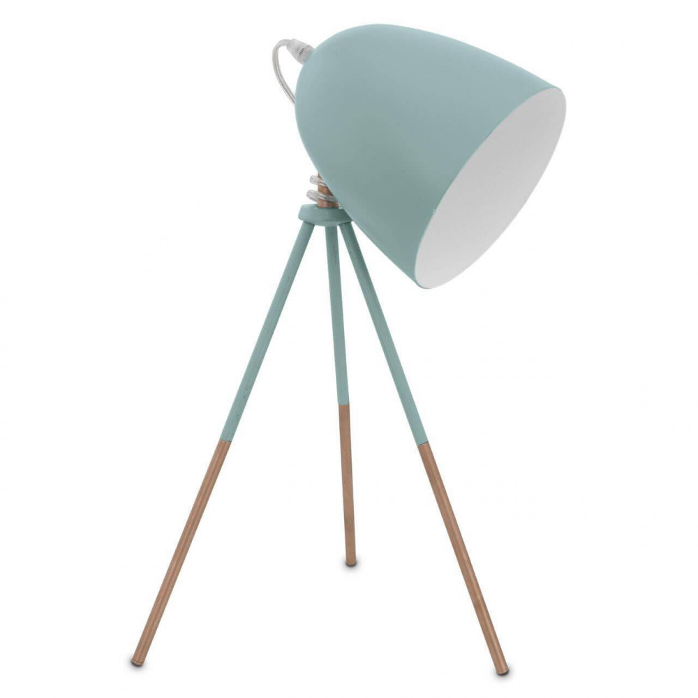 Настольная лампа декоративная Dundee 49337