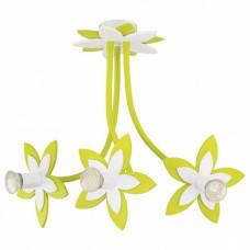 Потолочная люстра Nowodvorski Flowers 6898